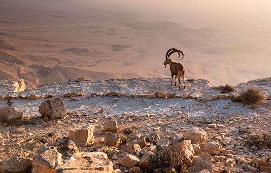 10 самых красивых мест для посещения в Израиле