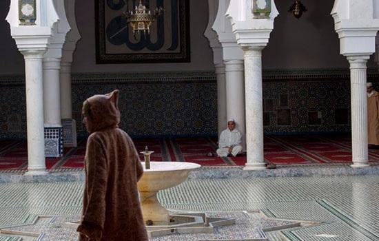Морокко: гид по священному городу