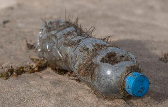 Средиземноморье может стать «морем пластика»