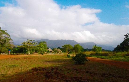 Правительство Гайаны по туризму стремится развивать общинные туры