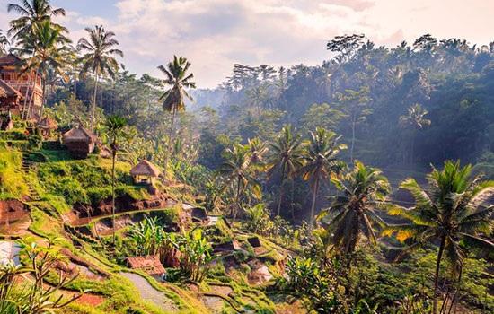 Как провести 48 часов в Убуде, Бали