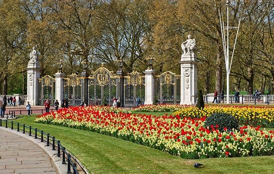 Какие парки стоит посетить в Лондоне?