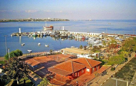 Власти дали ответ, почему изменился цвет реки Камара на северо-западе Турции