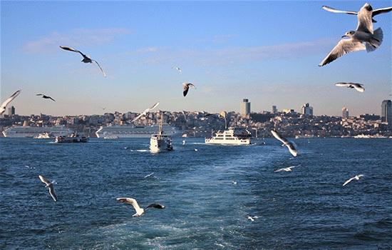 Стамбул для начинающих — практичный путеводитель