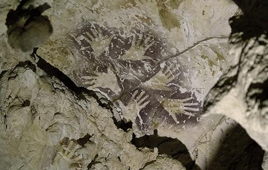 Самый древний рисунок животного найден в удаленной индонезийской пещере