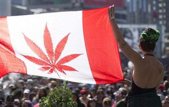 Канада готова стать лидирующей страной для марихуанового туризма
