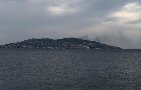 На одном из Принцевых островов Бююкаде у побережья Стамбула вспыхнул пожар