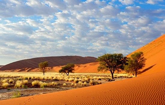 Красоты Африки: национальные парки самого жаркого континента