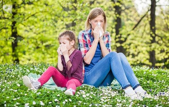 В преддверии сезона аллергии: способы уберечь себя