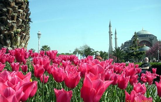 Апрельские фестивали Турции 2019