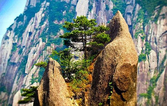 Гора Хуаншань поддерживает туризм в Германии