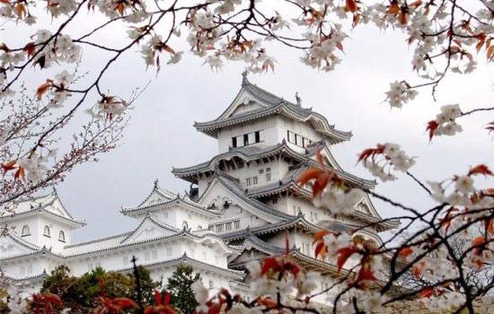 Япония: практическая информация для туриста