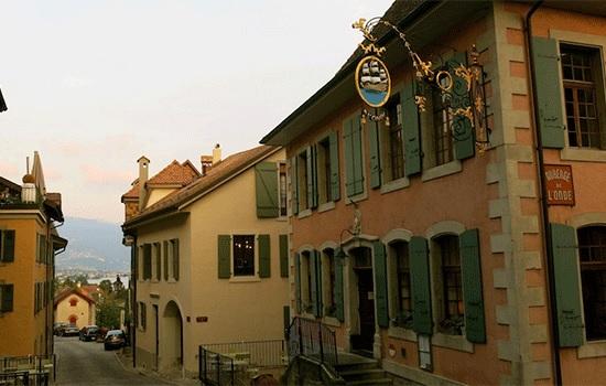 Самый известный виноградник Швейцарии — Лаво