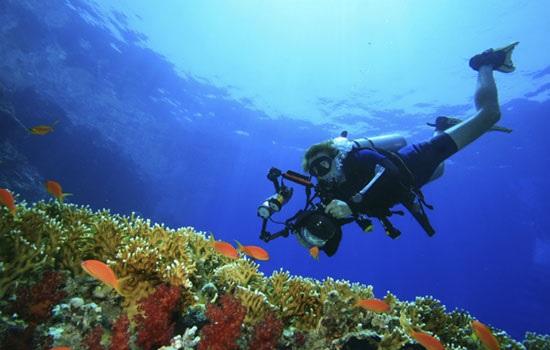 Чем привлекает Красное море Египта?