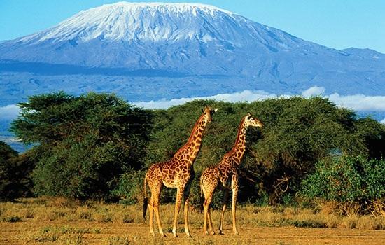 Лучшие места для посещения Африки