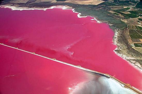 Розовые воды озера Ретба