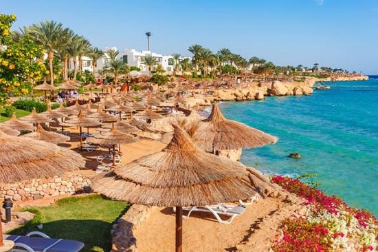В Египте выразили беспокойство, что туристам может не хватить гостиниц