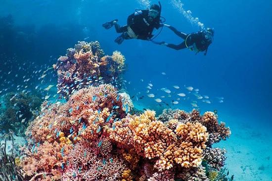 Летом летим в Египет, курорт Сахл-Хашиш - отличный вариант для отдыха 2020