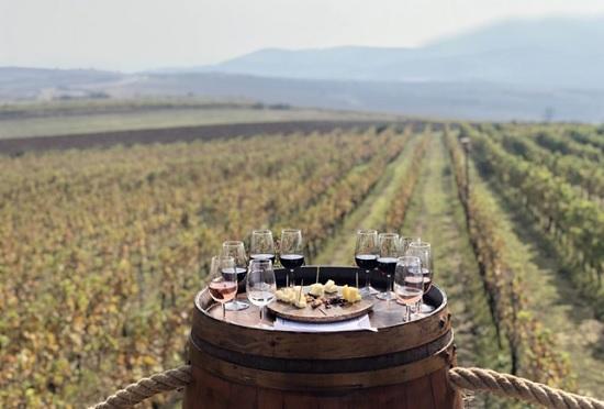 Все, что нужно знать о турецких винах
