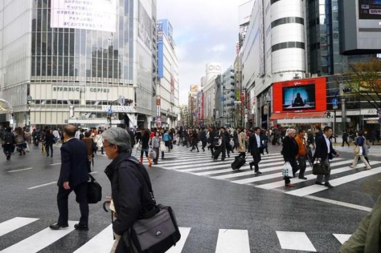 Поездка в Японию: правильное планирование и путеводитель