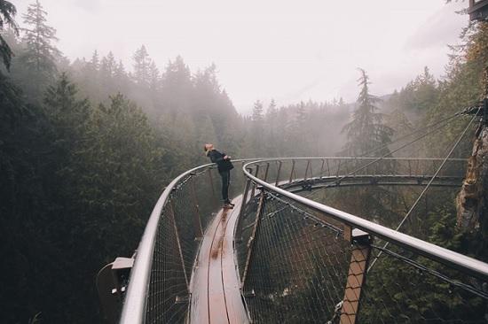Краткое руководство по Ванкуверу