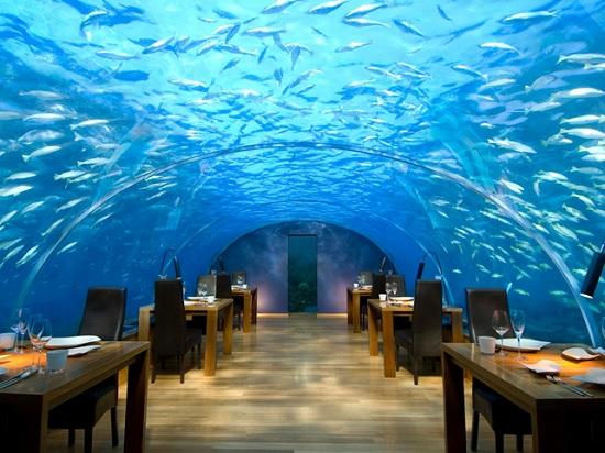 Самые дорогие рестораны мира