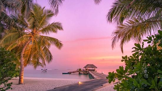 Побег из Мальдив: как туристы с ковидом пытались покинуть остров