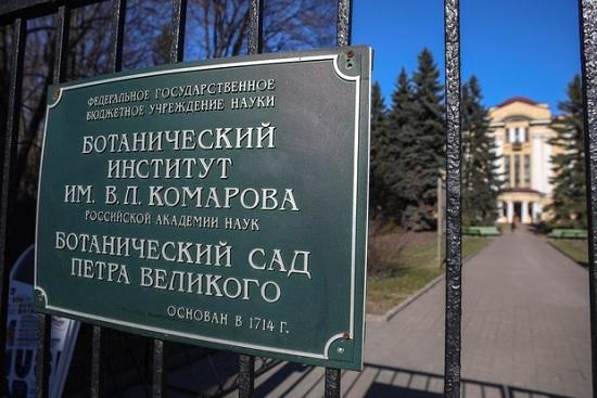 В Ботсаде Петербурга планируют усилить защиту от нашествия полуголых девушек