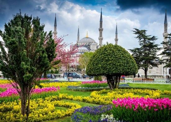 Фестиваль тюльпанов в Стамбуле — посмотрите на Турцию в мире цветов