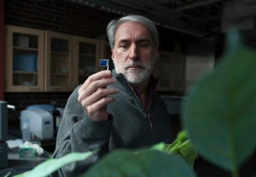 учёный демонстрирует искусственный лист