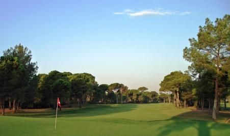 поля для гольфа в белеке