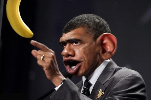 Barack-Obama-Monkey-64727