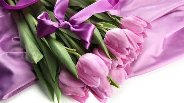 Названа средняя стоимость букета тюльпанов в Архангельске