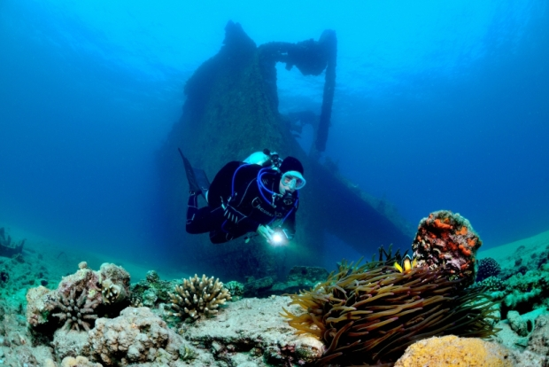 руины кораблей часто становятся важными экономическими факторами
