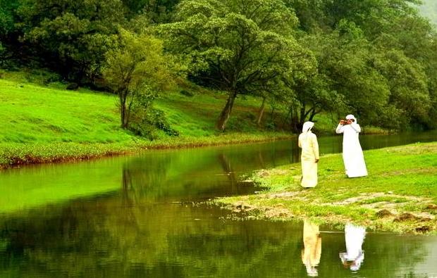 область вокруг прибрежного города Салала представляет собой зеленый оазис