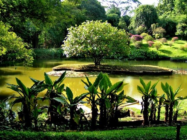 Сад Парадении является самым красивым садом Азии