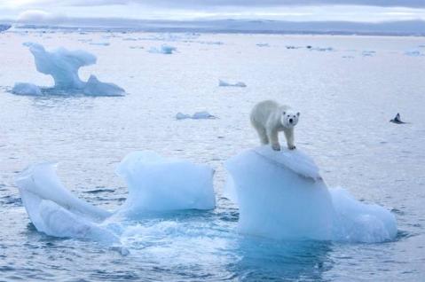 pg-6-arctic-ice-pa