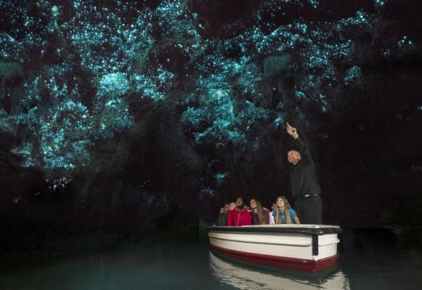 Группа скользит по спокойной воде, любуясь красотой пещерного неба с бесчисленными огнями