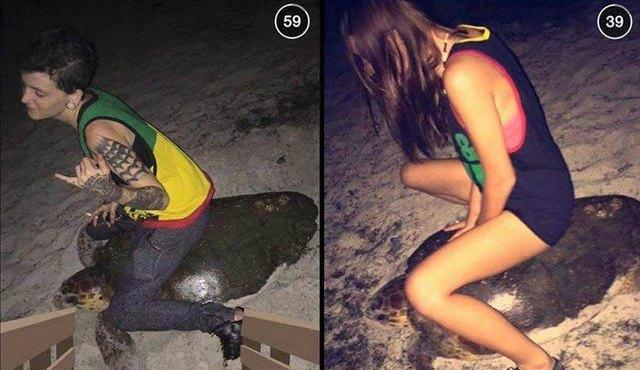 women-riding-sea-turtle-snapchat_1436044409119_20820998_ver1.0_640_480